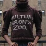 Vulture, Bronx Zoo
