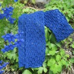 Delphinium Free lace Scarf Knit Pattern