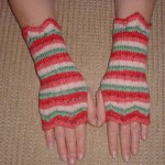Watermelon Wrist Warmers