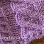 Mini Claw and Wide Cable Knitting Pattern