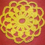 Chain Flower Crochet