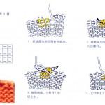 Japanese Knitting Symbol Visual Cues