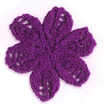 Lace Flower with 6 Petals
