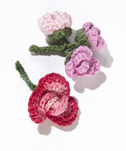 Rolled Rose and Rosebud