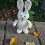 Free Bunny Rabbit Knitting Pattern