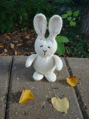 rabbit-on-ledge1