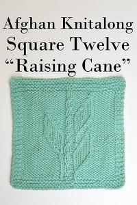 Square 12 - Raising Cane