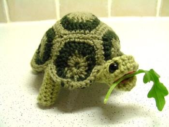 Free Turtle Patterns ⋆ Knitting Bee 2 Free Knitting Patterns