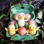 Easter chick free knitting pattern