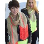 Caron Hot Point Scarf Free Easy Women's Scarf Knit Pattern
