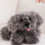 My Precious Puppy Free Knitting Pattern