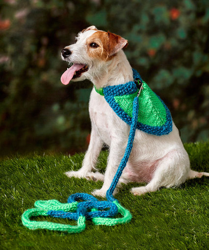 Free Knit Dog Leash Pattern Patterns Knitting Bee 1 Free