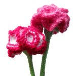 Carnations Free Flower Knitting Pattern