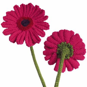 Gerberas Free Flower Knitting Pattern