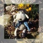 Schäfchen Pommel dog Free Knitting Pattern
