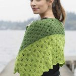 Leafy Transitions Fingering Weight Lace Shawl Free Knitting Pattern