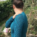 Field of Flowers Free Sweater Knitting Pattern.