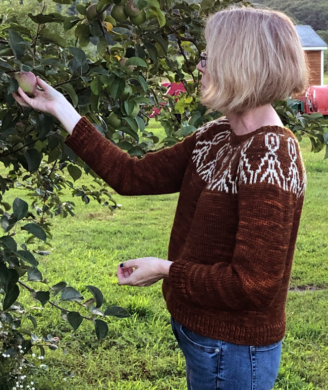 Free knitting pattern for a stranded colorwork sweater