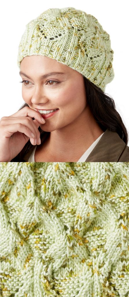 Free Knitting Pattern for a Medallion Hat