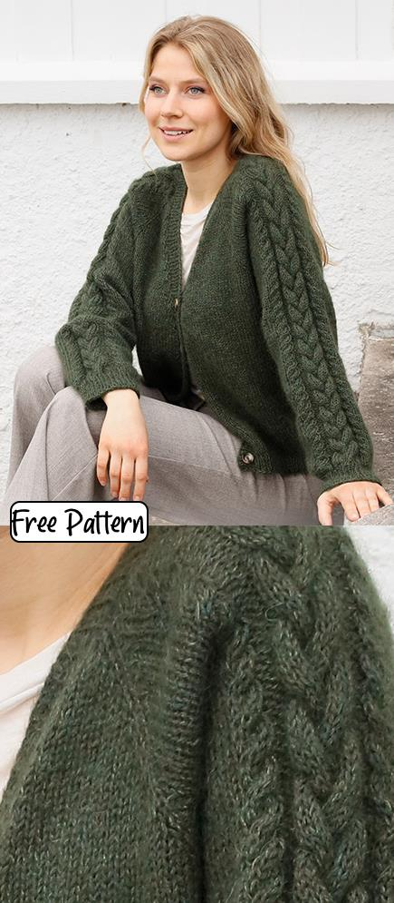Free knitting pattern for a cardi with cabled raglan sleeves