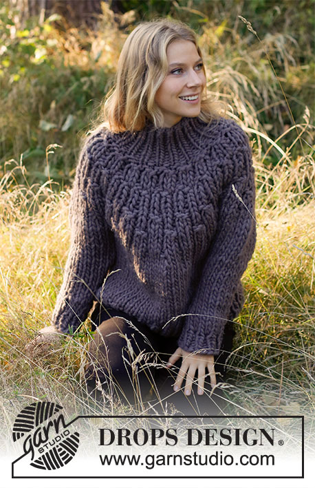 Free Knitting Pattern for a Knitted sweater with high collar and round yoke